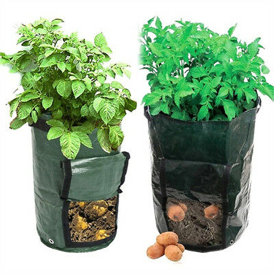 Potato Grow Planter PE Container Bag Pouch Root Plant Growing Pot on Side Window