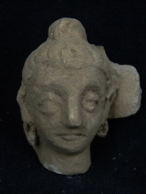 Ancient Stucco Buddha Head Gandhara/Gandharan 200 AD NO RESERVE #STC5016