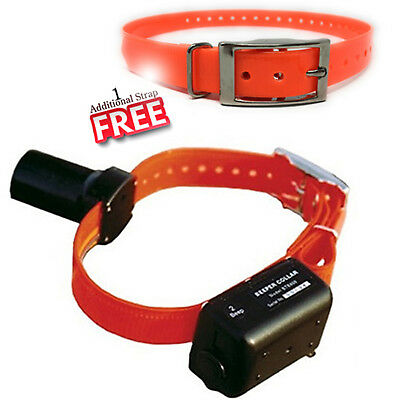 DT Systems BTB800 Baritone Beeper-Locator Dog Collar, Rechargeable