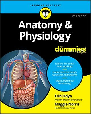 Anatomy and Physiology For Dummies (For Dummies  by Erin Odya New Paperback Book