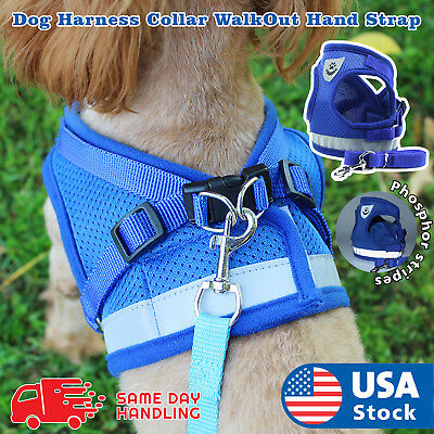 Small Light Dog Mesh harness Vest Collar soft chest strap XXS-L and Leash set