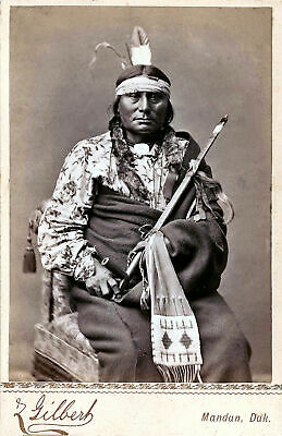Native American Indian Chief Gaul Portrait 1880 Photo Art Print Picture