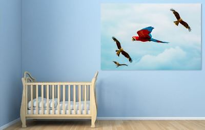 BEAUTIFUL BIRDS PARROTS home wall Picture Art Framed Canvas choose your size