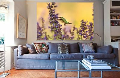 BEAUTIFUL BIRDS home wall Picture Art  SCENERY Framed Canvas choose your size