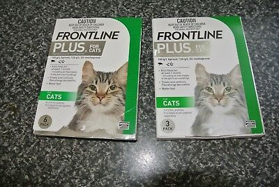 Frontline Plus 6 + 3 Pack Fleas and Lice Control For Kittens and Cats - Green