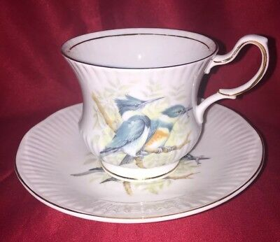 Queen's Rosina Birds of America Series Belted Kingfisher Tea Cup and Saucer Set