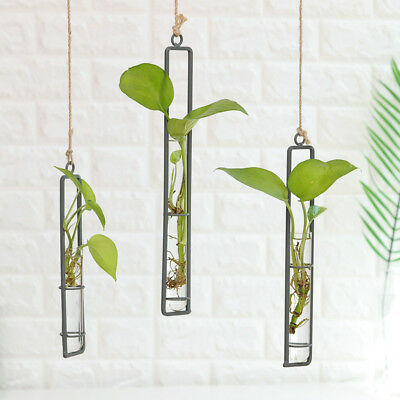 Transparent Glass Wall Hanging Flower Vase Planter Tube Container Pot Unique New