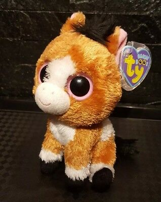1466b63182a Ty Beanie Boo Very Rare Vgc Dakota Horse With Purple Tag   Protective Case  Cover