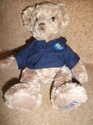 174a21df27876 Thomas Cook Tommy Bear Branded Soft Toys
