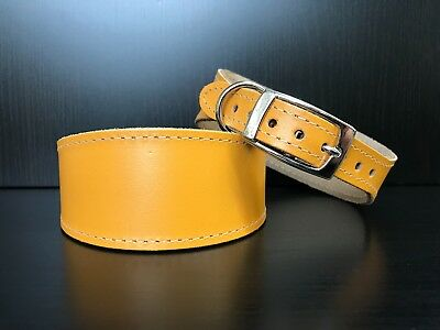 S/M Leather Dog Collar LINED Greyhound Lurcher Whippet Saluki YELLOW