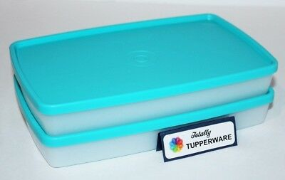 Tupperware Freeze It Set of 2 Square Round 2.5 Cup Freezer Rectangles Snowflakes