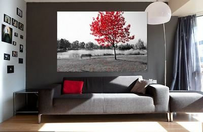 NATURE COLORFUL artwork SCENERY picture wall Canvas home wall choose your size