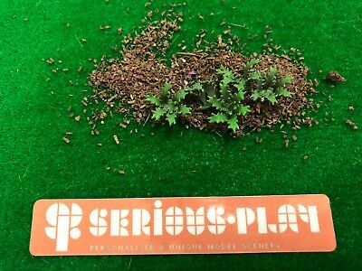 Mini Jungle Plants -Resin Scenics Wargames Warhammer Model Railway Scenery green