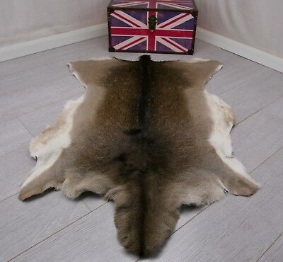 Winter Fallow Deer Skin Fur Rug Pelt Leather 100 Natural Sheepskin Cowhide