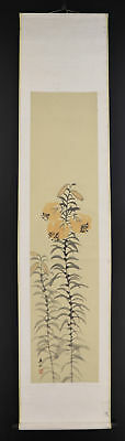 "JAPANESE HANGING SCROLL ART Painting ""Flower"" Asian antique  #E4761"