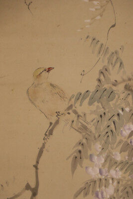 "JAPANESE HANGING SCROLL ART Painting ""Bird and Flower"" Asian antique  #E4751"