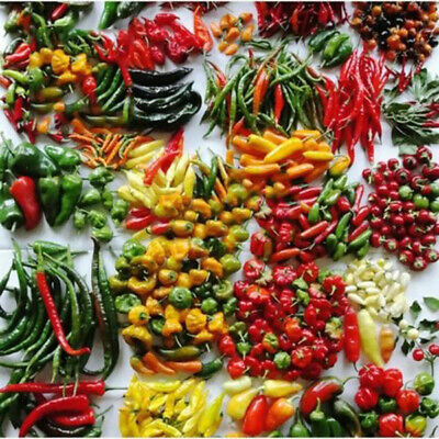 200Pcs Hot Pepper Seeds Chili Mixed Seeds Yard Garden Vegetable Plants Seeds