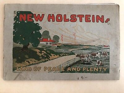 New Holstein Lake Winnebago WI Wisconsin Souvenir Booklet Filled With Info