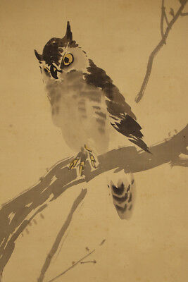 "JAPANESE HANGING SCROLL ART Painting ""Owl"" Asian antique  #E4789"