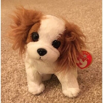 Ty Beanie Baby ~ REGAL the King Charles Spaniel Dog ~ MWMT