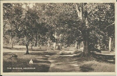 Vintage postcrd of The Avenue, Abadour, Fife