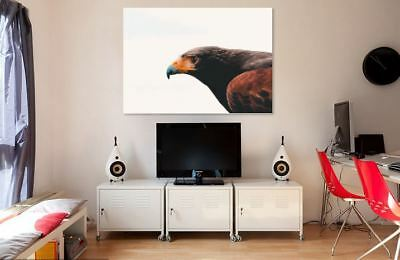 NATURE ANIMAL WALLART COLORFUL SCENERY picture Canvas home wall choose your size
