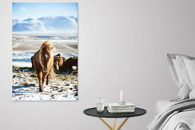 COLORFUL SCENERY NATURE ANIMAL WALLART picture Canvas home wall choose your size