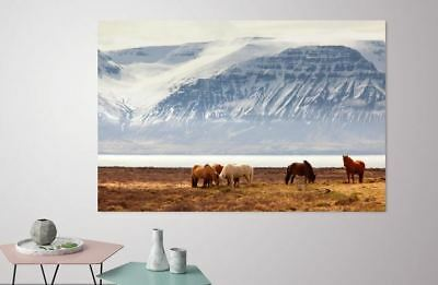 COLORFUL SCENERY SNOW ANIMALS WALLART picture Canvas home wall choose your size