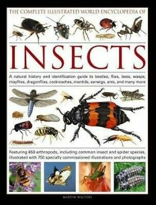 The Complete Illustrated World Encyclopedia of Insects: A n... by Martin Walters