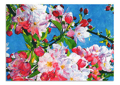 Beautiful Original Watercolour Painting Drawing Aceo Art  Picture Flowers