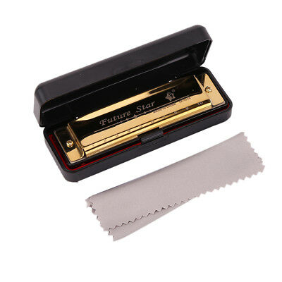 Harmonica 10 Holes Blues Harp Mouth Organ Key of C + Case For Beginner Gifts