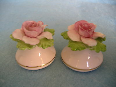 Antique Porcelain Salt And Pepper Shaker Set-English China-Rose Buds