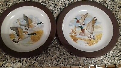 Pair Of Hornsea  Lancaster Vitramic Plates With Two Flying Geese