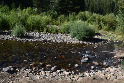 "20 Acre Gold Mining Claim (Placer) ""Park Creek"" Summitville District Colorado"