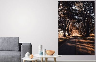 beautiful photography Perspective  ART picture Canvas home wall choose your size