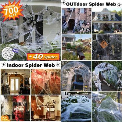Halloween Decorations  Props Covered 660Sqft Stretch Large Spider Web Spooky