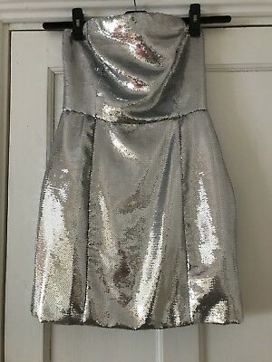 Stunning Silver Sequinned Dress Size 12 Brand New