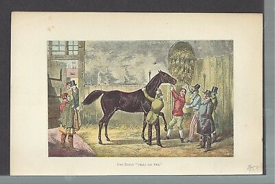 "The Baron "" Vils His Wet "" Horse Racing Stable Traders  Antique History Book"