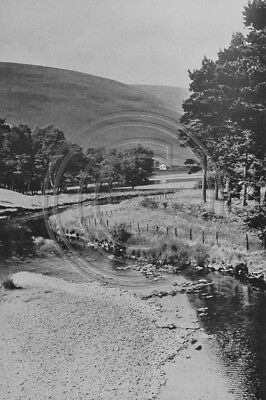 Photo 6x4 The Yarrow Above St Mary's Loch Selkirkshire 1930s