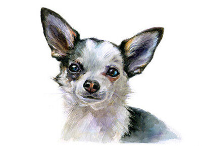 artav Chihuahua 01 Art Print From Watercolor Painting