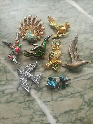 Job Lot Of Vintage Bird Brooches