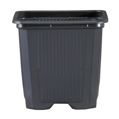 10x Black Square Growing Pots for Plants TEKU V - 11x11x12 PP (1L)