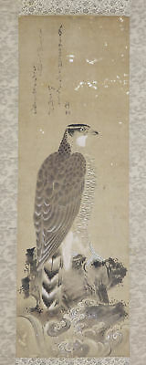 "JAPANESE HANGING SCROLL ART Painting ""Hawk"" Asian antique  #E4908"