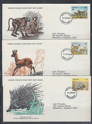Lesotho 1977 Three WWF first day covers