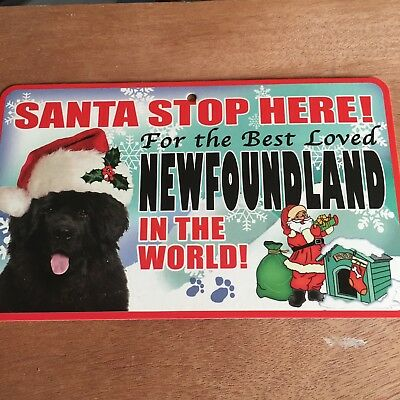 Newfoundland Santa Stop Here Sign