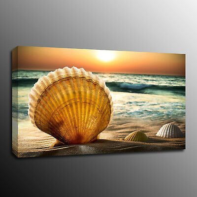 Framed Sea shell beach Canvas Print Home decor Sunset Painting Pictures