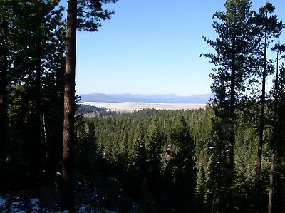 Sierra Nevada Cabin Retreat Land For Sale