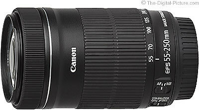 Canon EF-S 55-250mm f/4-5.6 IS STM Objektiv (White Box) Kompakt Leicht Mobil