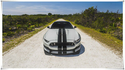Car Ford Ford Mustang Muscle Car Vehicle 24 X 14 inch Silk Poster