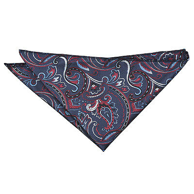 DQT Woven Floral Cypress Paisley Navy & Burgundy Formal Handkerchief Hanky